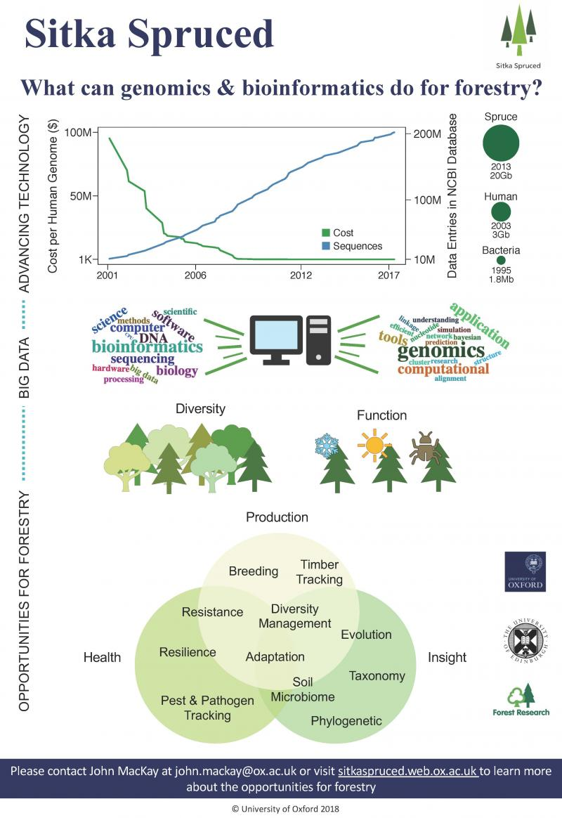 what can genomics and bioinformatics do for forestry